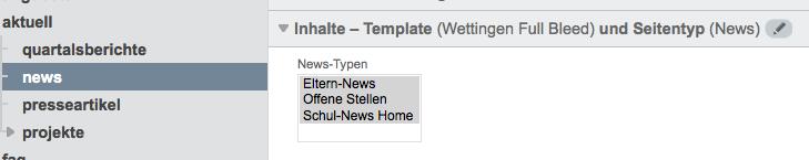 Bildschirmfoto von Detailanzeige und Newslisten