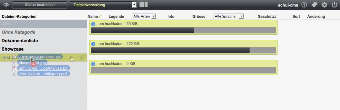Bildschirmfoto von Mehrere Dateien gleichzeitig hochladen
